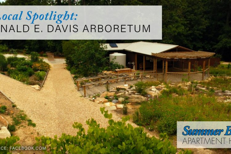 Local Spotlight: Donald E. Davis Arboretum