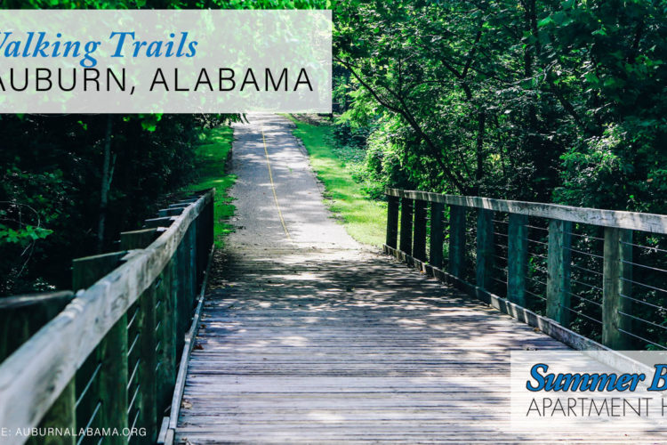 6 Walking Trails in Auburn, Alabama