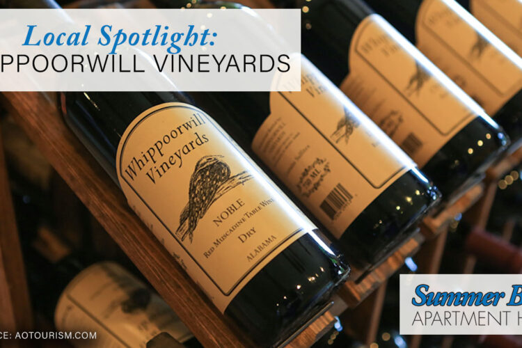 Local Spotlight: Whippoorwill Vineyards