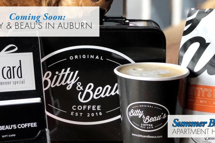 Coming Soon: Bitty & Beau's in Auburn